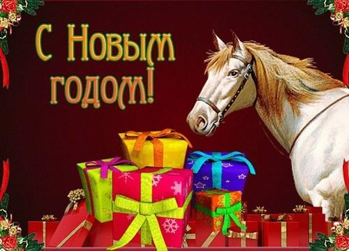 1388389234_107898197_3143891_s_novim_godom_loshadi_1